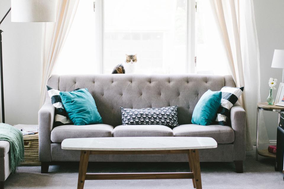 Cojines decorativos para cambiar el ambiente de tu casa